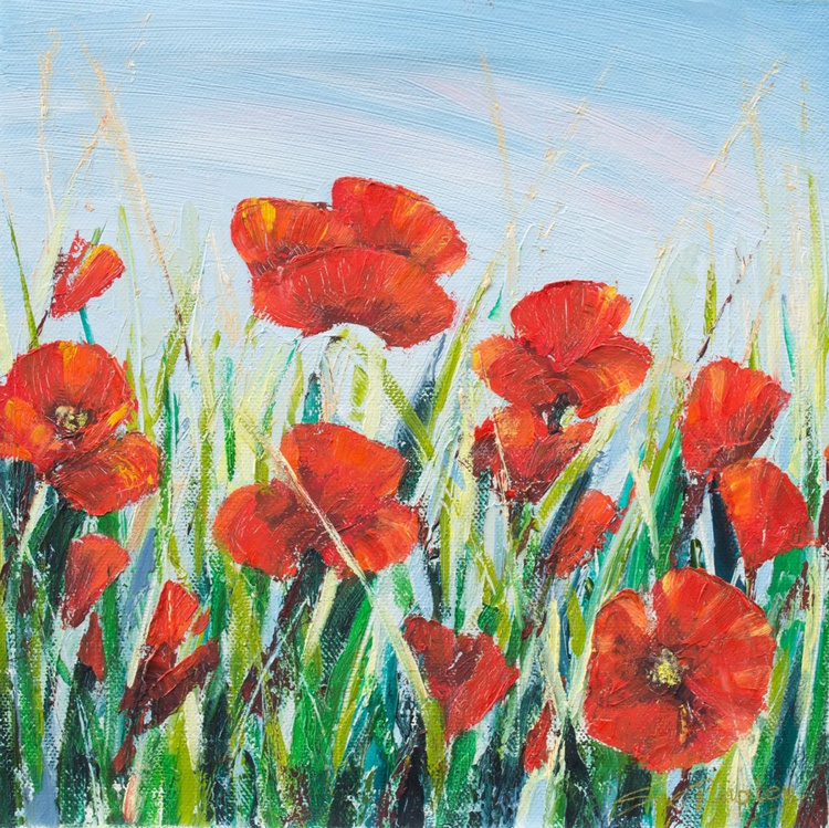 Field Poppies I - Image 0