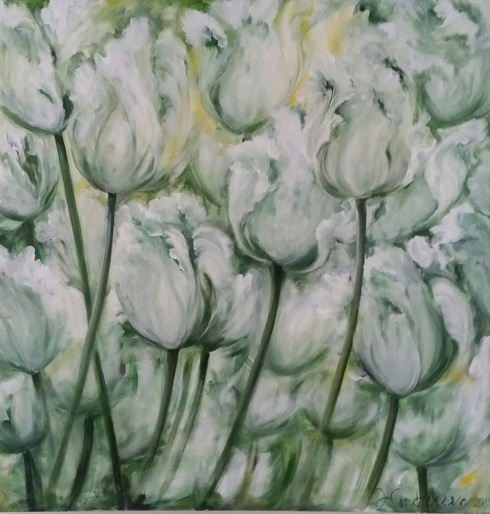 """Witte Tulpen"" - Image 0"