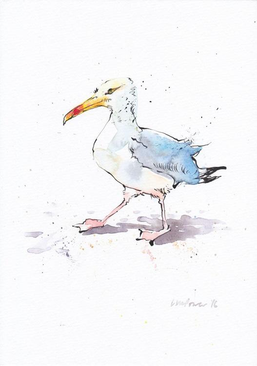 Seagull sauntering - Image 0