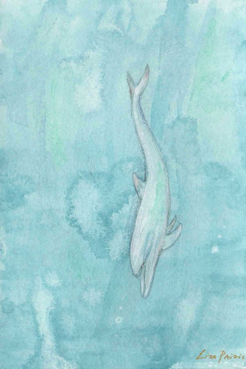 Diving White Dolphin original watercolour painting - Image 0