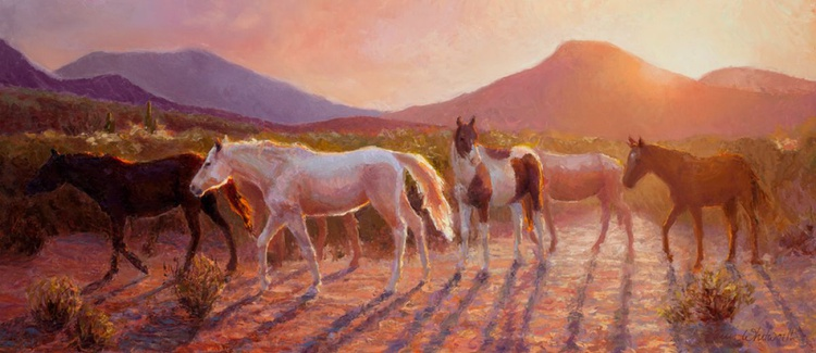 More Than Light - Wild and Abandoned Horses in the Arizona Desert - Image 0