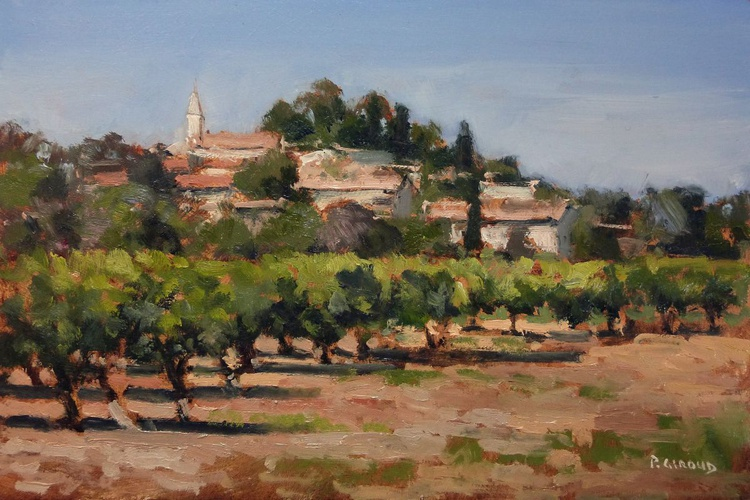 Vineyards in Vaucluse - Image 0