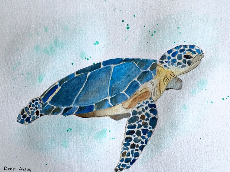 The Blue Sea Turtle - Image 0