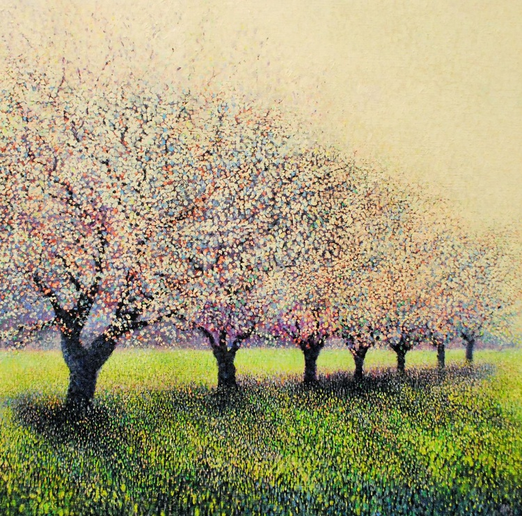 Early Morning Blossoms - Image 0