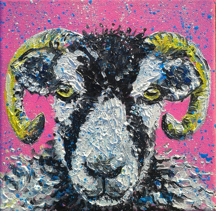 """Swaledale sheep"" - Image 0"