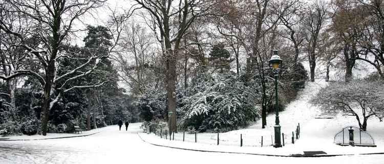 White Christmas 02L -