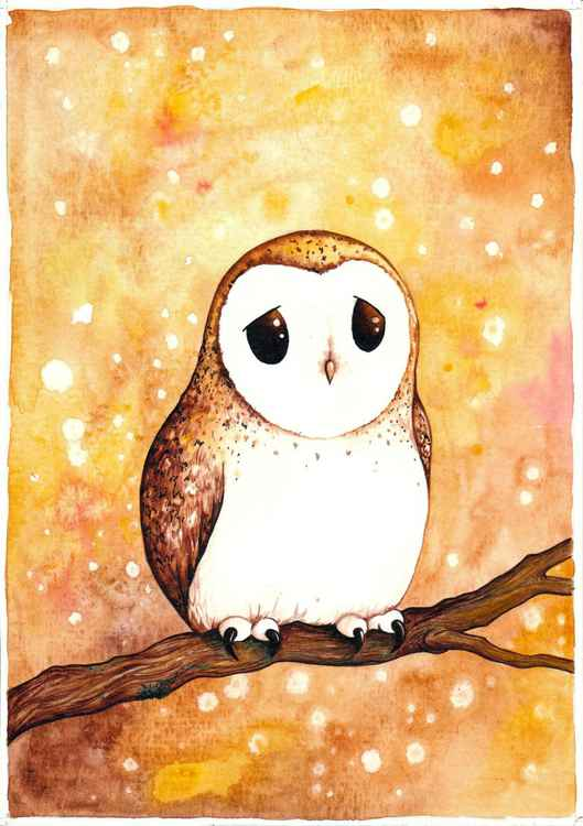 Autumn owl -