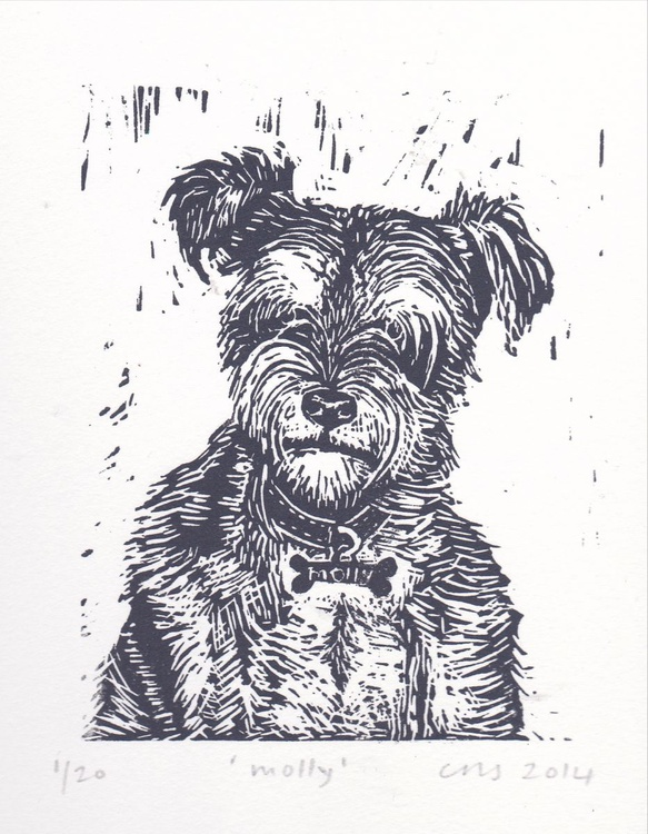 Molly the Schnauzer - Image 0