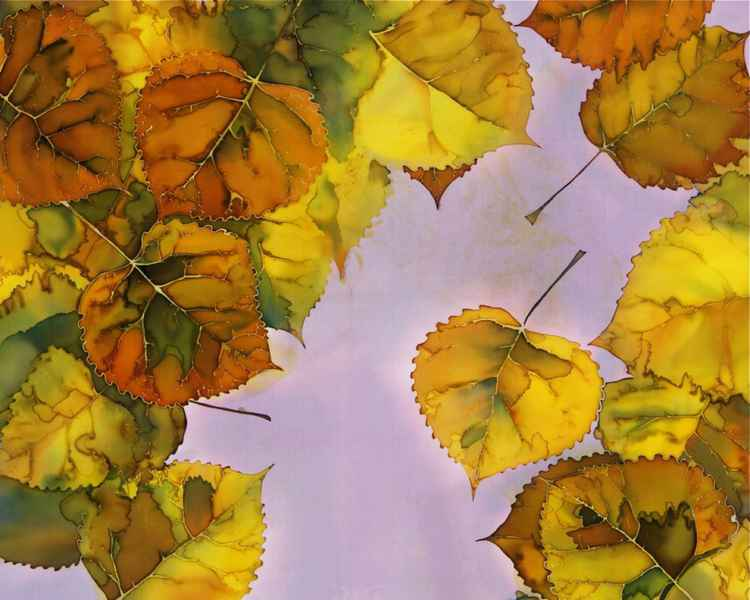Cottonwood Leaves in Autumn