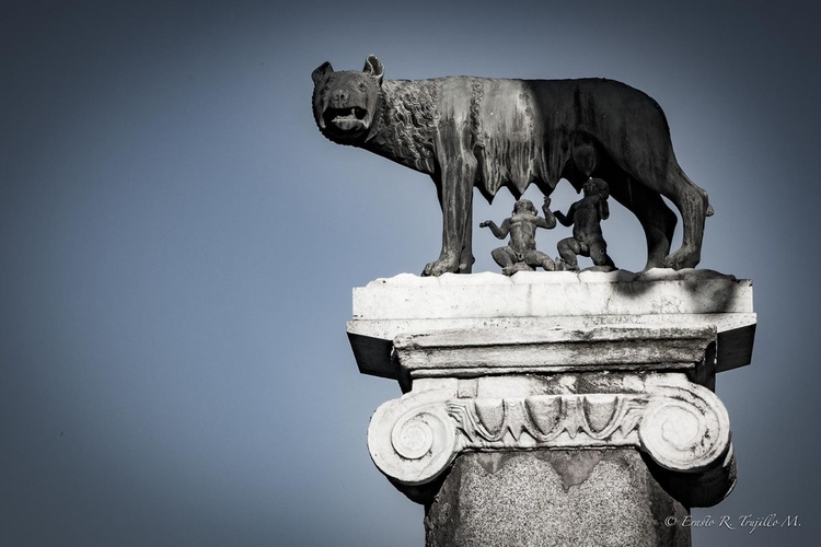 Lupa Romana - Image 0