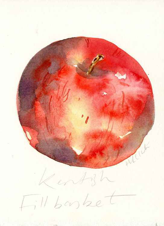 Kentish Fillbasket Apple Watercolour -