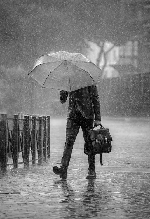 Rain Man  - Limited Edition Print - Image 0
