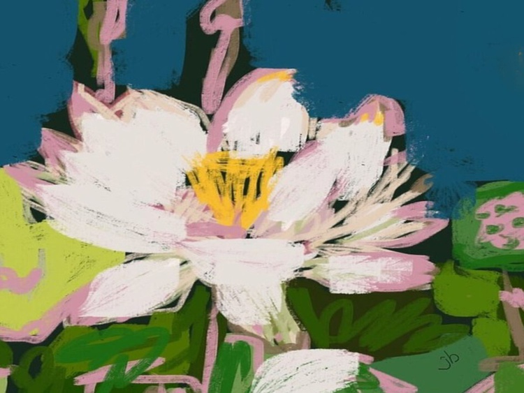 Blooming Water Lily - Image 0
