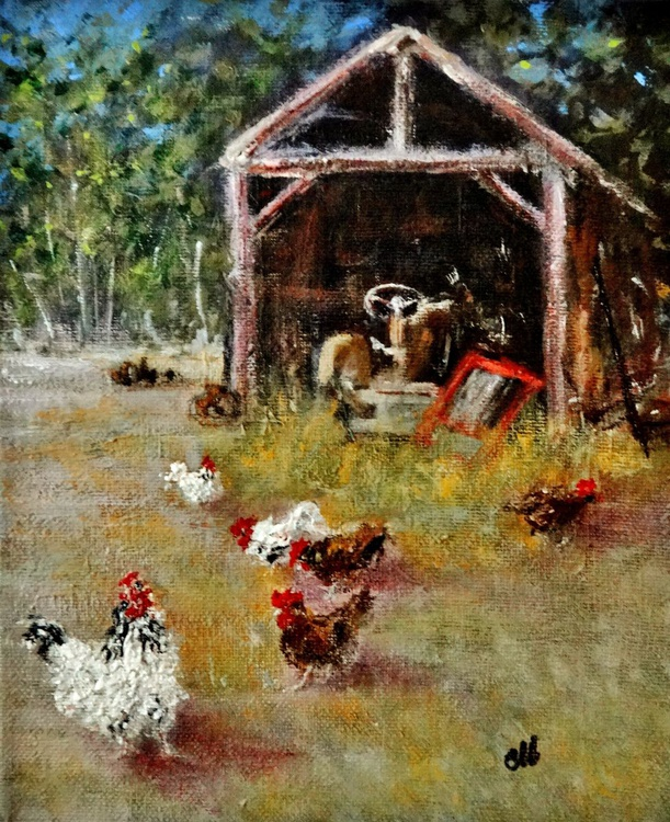 Old shed/chicken fiesta - Image 0