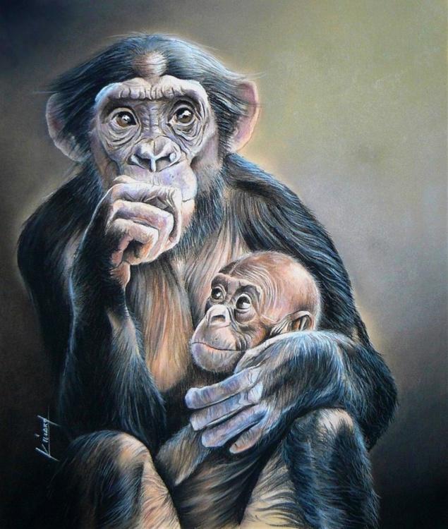 Primates - Image 0