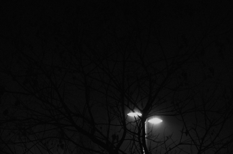 Dark - Image 0