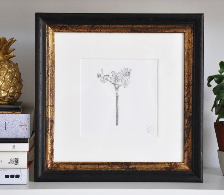 Original drawing of a narcissus flower - Image 0