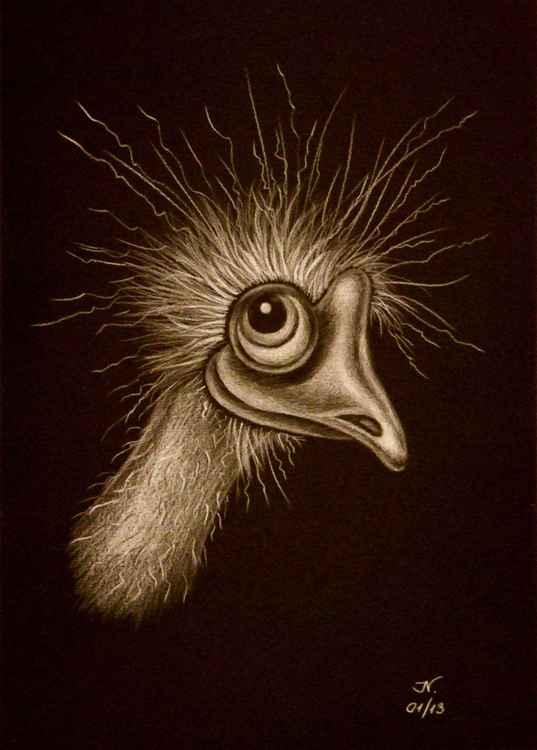 Ostrich emu -