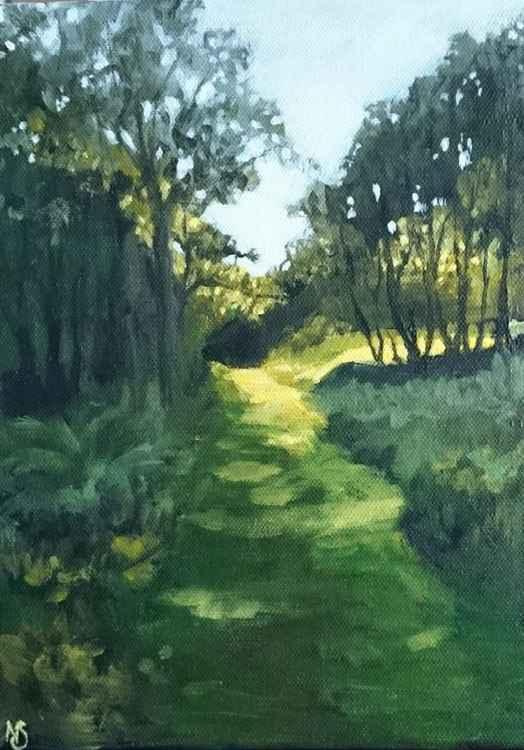 Woodland Glade -