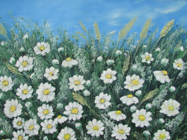 daisy meadow - Image 0