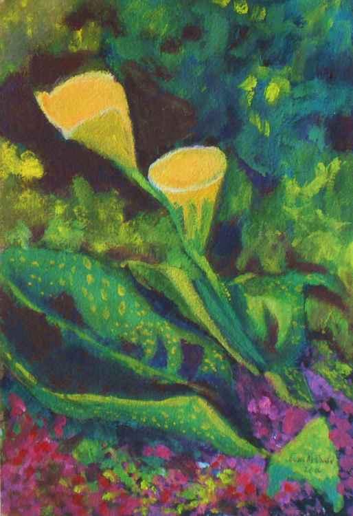 Yellow Calla II -