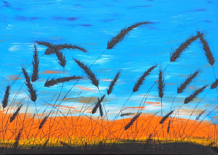 Sunset in the grass - Image 0