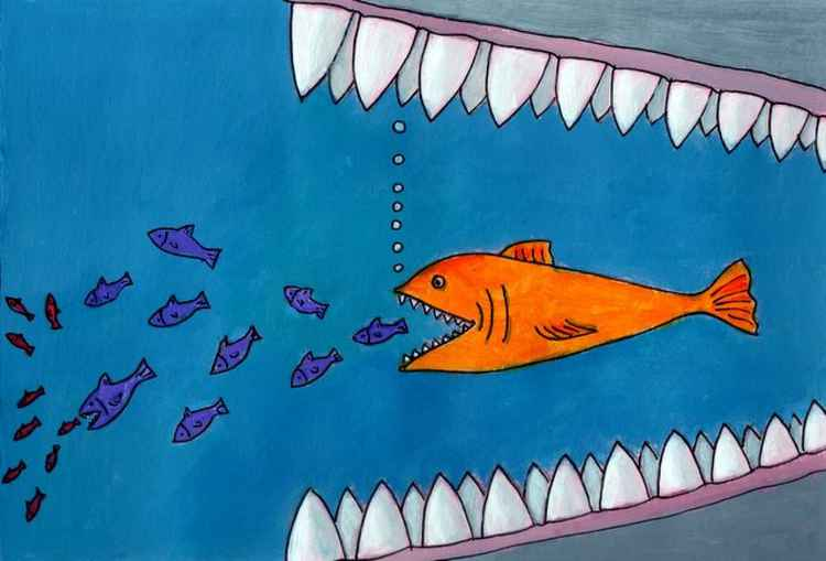 Fish Food Chain.