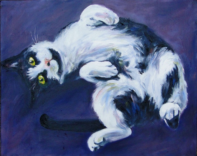 Tranquil Cat  - Image 0