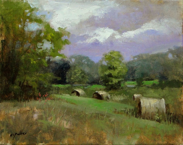 Field In Tennessee - Image 0