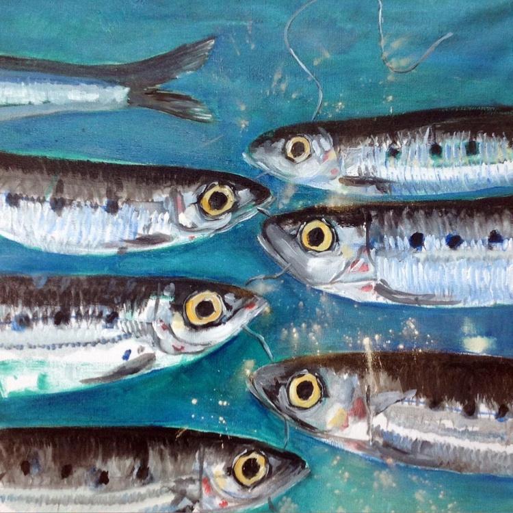 Sardine Faceoff - Image 0