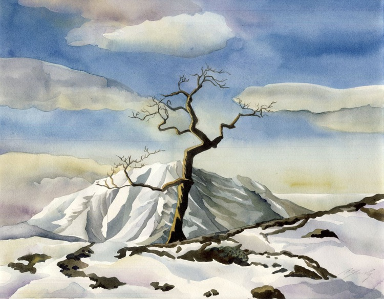 a tree on the snowy mountain - Image 0