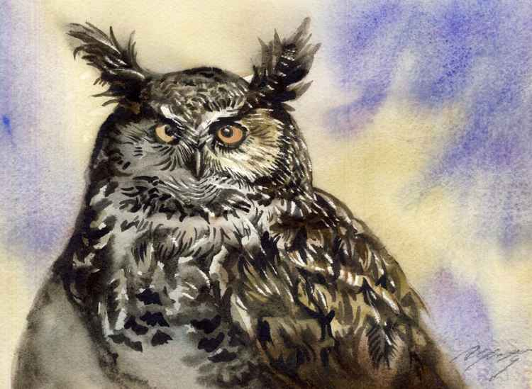 owl watercolor -