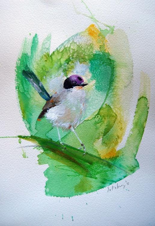 Purple crowned Fairy wren - Image 0