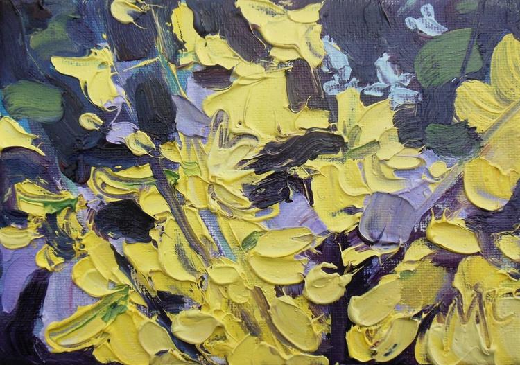 Forsythia - Golden Yellow - Image 0