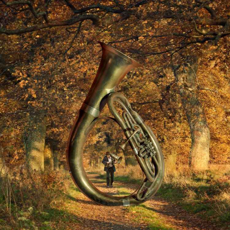 Music Of Autumn -