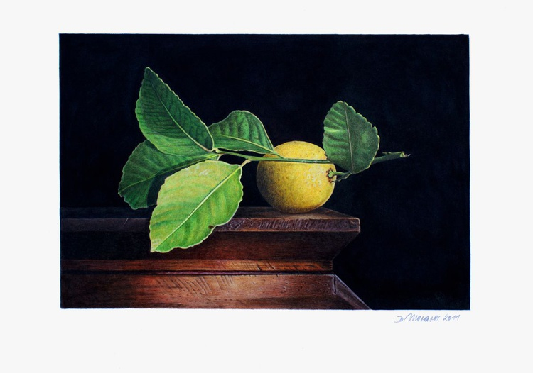 Still Life with Lemon - Image 0