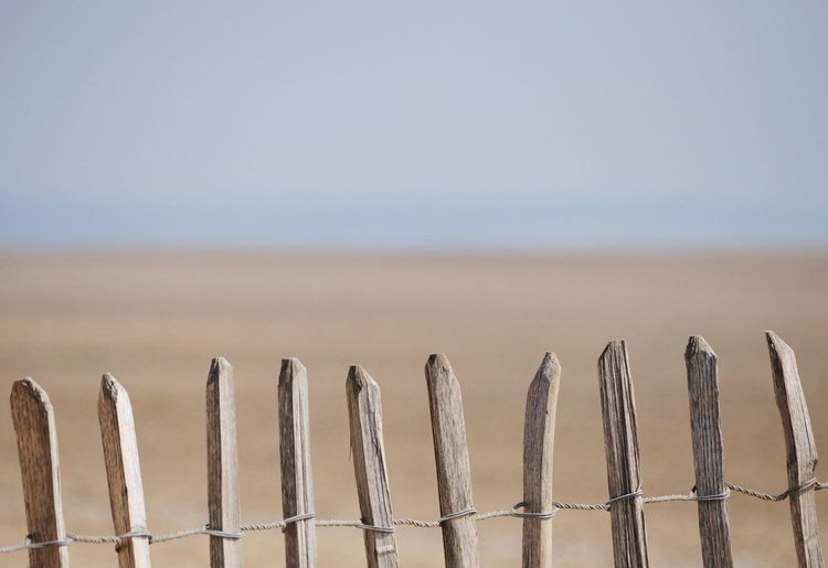 Past Summers (Formby 2) - Unmounted - Image 0