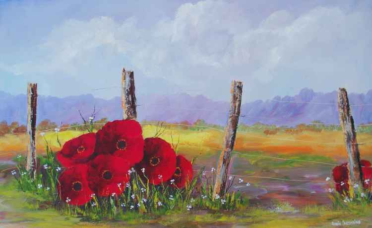 Fence Poppies -