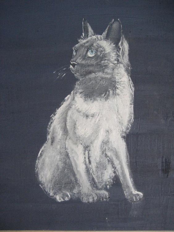SMOKEY!  You BAD, BAD Cat - Image 0