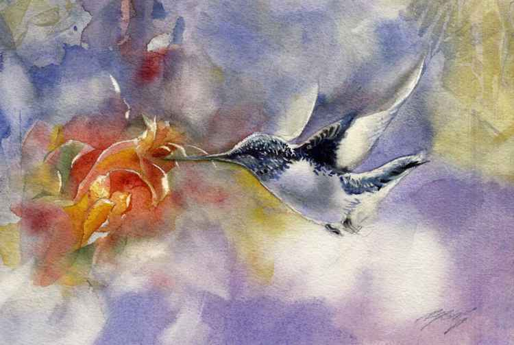 The flight of the humming bird -