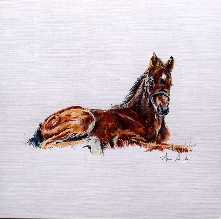 The rest / Foal Horse Equine Art  Modern Contemporary - Image 0
