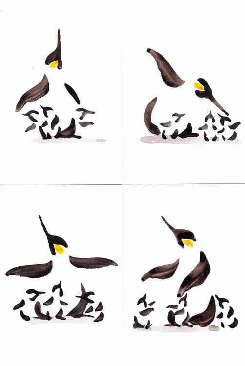 Penguin and three chicks (4 piece set) 1015S1