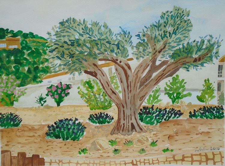 Olive tree in  Spanish Garden I - Image 0