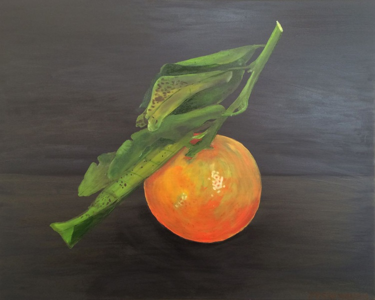 Nadorcott Mandarin - Image 0