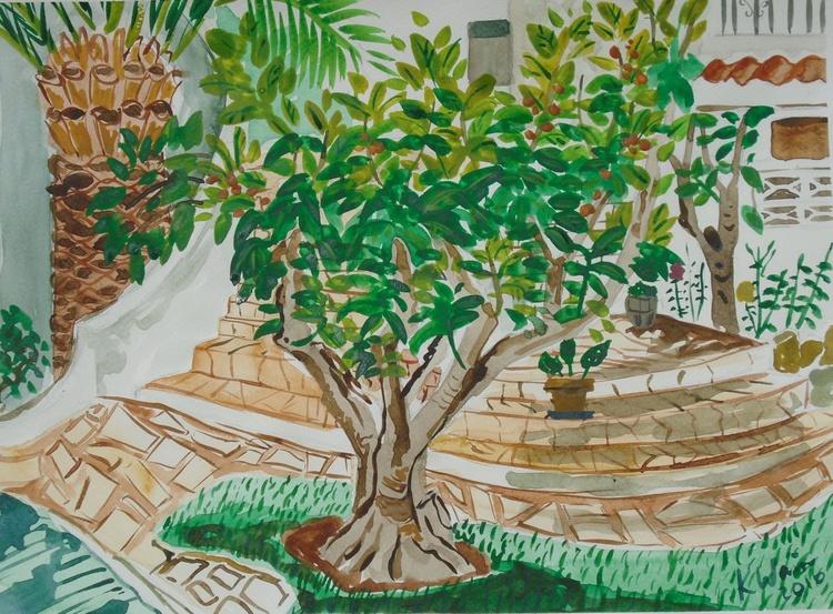 Nispero tree in  Spanish Garden - Image 0