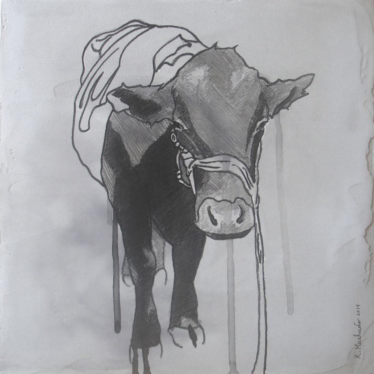 Bull Carved XIV - Image 0
