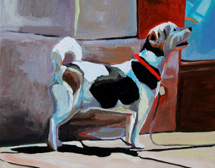 A Stroud Terrier - Image 0
