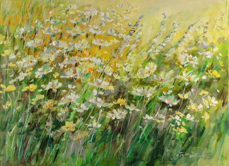 Meadow in the sun - Image 0
