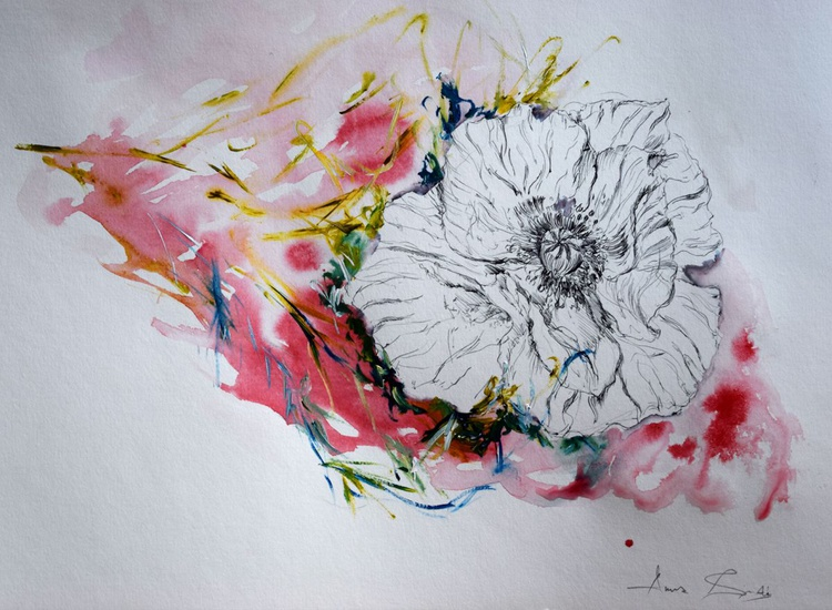 The poppy flower / 38 cm x 27 cm - Image 0
