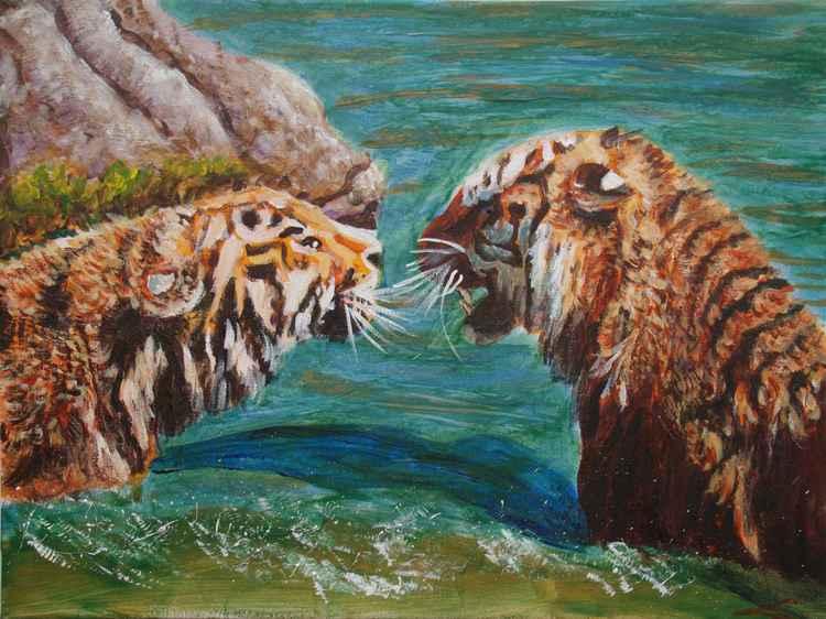 Siberian tigers -